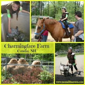 Day Trip: Charmingfare Farm Candia, NH