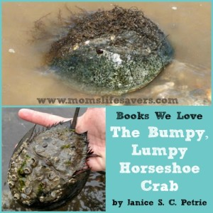 Books We Love! The Bumpy Lumpy Horseshoe Crab