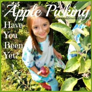 Apple Picking – Have You Been Yet?
