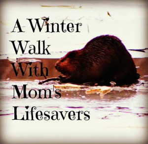 Winter Walking In Nature with Mom's Lifesavers