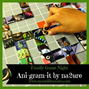 Ani-Gram-It-Featured