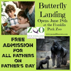 Free Admission for Dad at Zoo New England