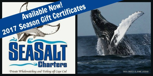 ss-2017giftcertificates